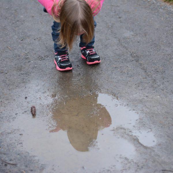 puddle-2524294_1920